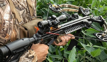 Six New Bear X Crossbows from Bear Archery