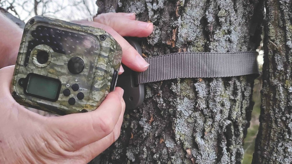 Great Trail Cameras to Capture Retail Traffic