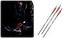 Bloodsport Hunter Strobe Lighted Nock Crossbow Arrows