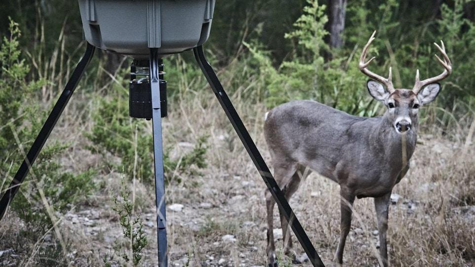 Should You Stock Deer Feeders?