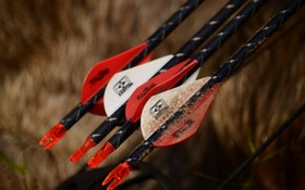 Going hog wild with Easton Archery
