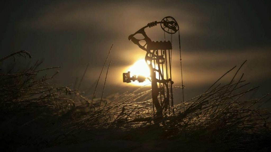 Manufacturer Spotlight: Hoyt Archery