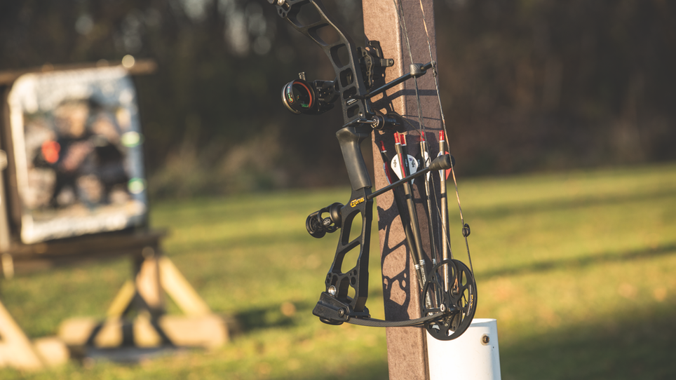 Top 8 Budget Bows for 2017