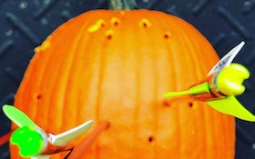 Halloween- and Thanksgiving-Themed NASP Photo Contests