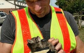 Inspection Camera Aids in Cat Rescue
