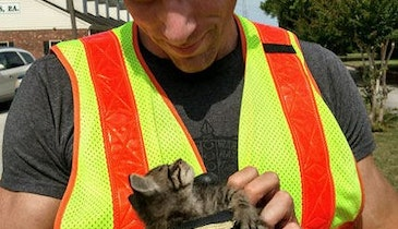Inspection Camera Aids in Cat Rescue