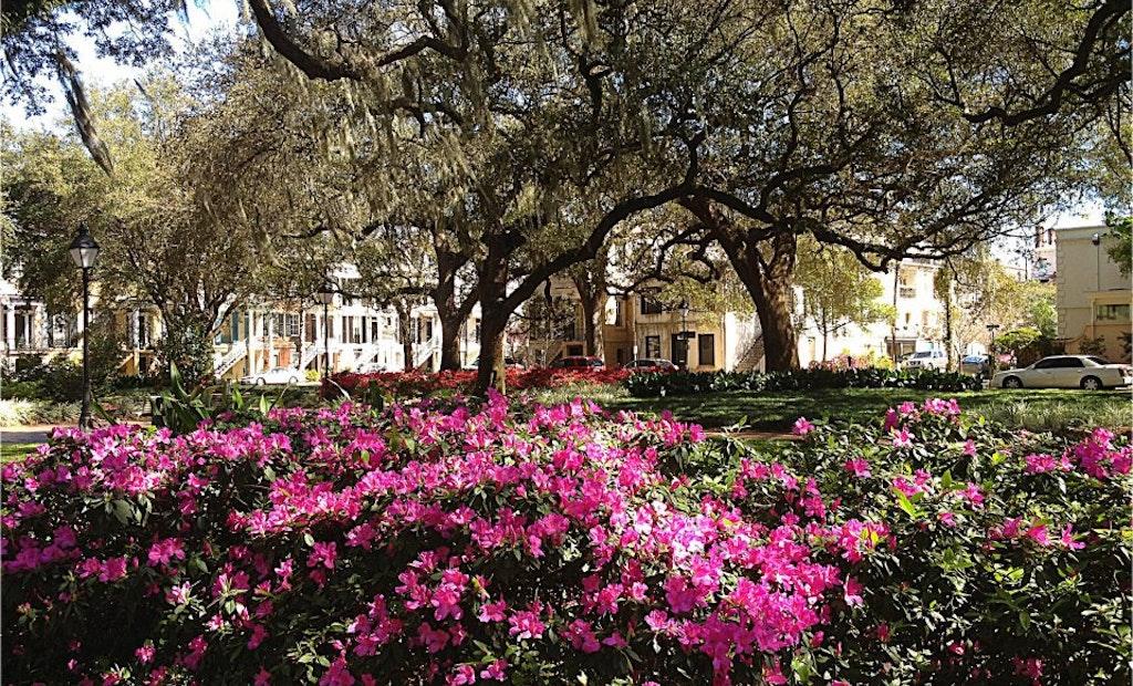 Savannah to Replace 19th Century Brick Pipelines