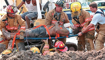 Don't Become a Trench Collapse Statistic
