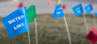 Utility Flags: Know Your Colors