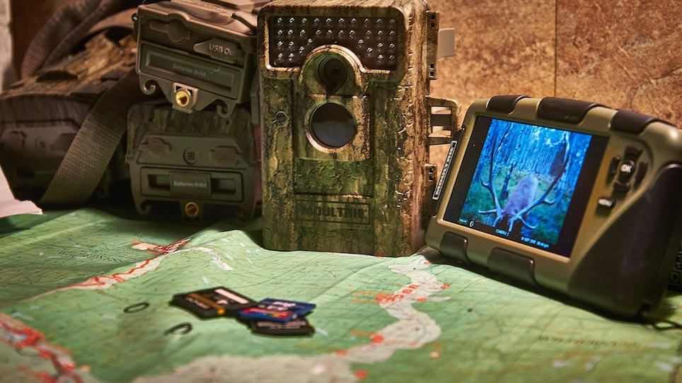 You Have Your Trail Cameras, But Do You Have a Plan?