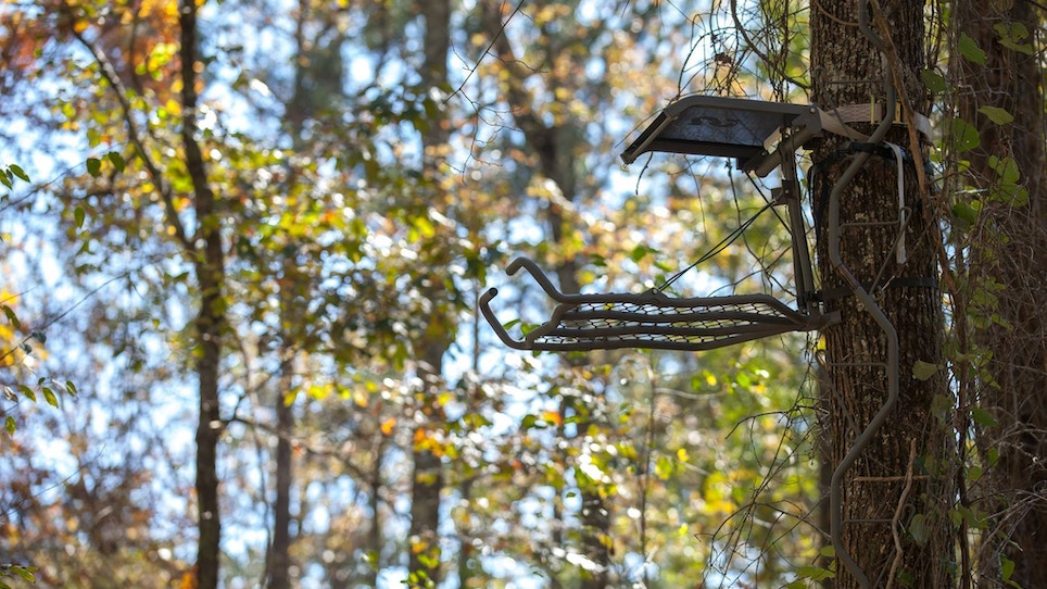How to safely hang a treestand