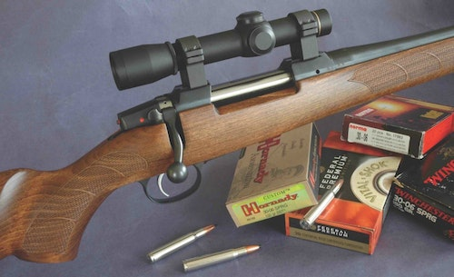 CZ 557 American with a beautiful and functional walnut stock.