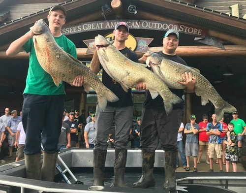 As shown in this weigh-in pic from last summer's event, 2019 Muzzy Classic attendees will see numerous big fish brought to the scale.