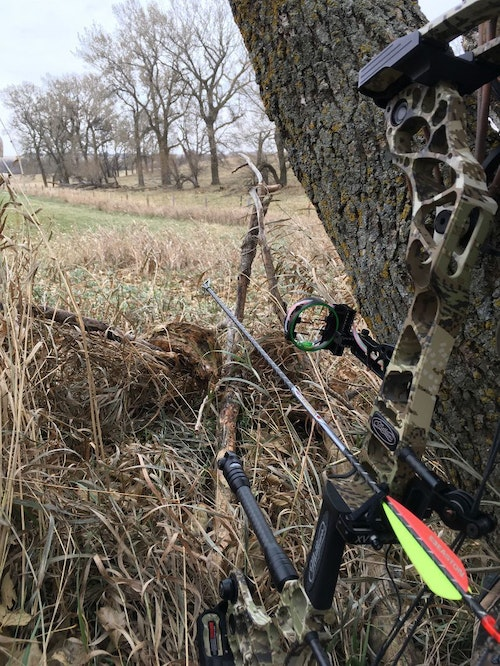 The author snapped this photo 30 minutes before the 4x4 buck arrived at the alfalfa field. The arrow is pointed to the spot in the green field where the shot eventually occurred.