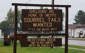 Don't Toss Those Squirrel Tails