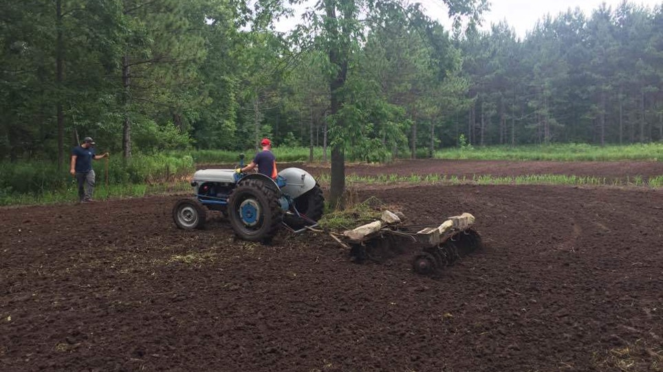 Indulge Your Inner Farmer by Planting a Food Plot