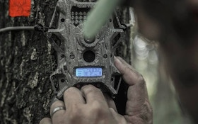 Trail Camera Tips for Beginners