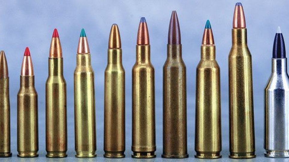 The Past, Present and Future of the .22