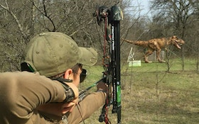Improve Your Archery Skill With Offseason 3-D Shooting