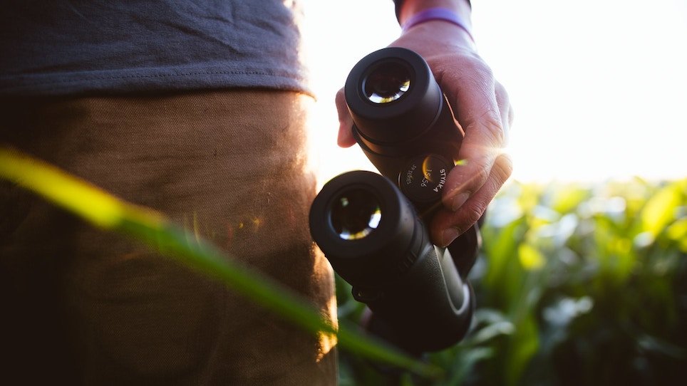 These Two Hunting Optics Are Worth a Second Look