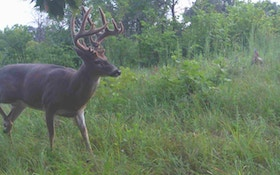 5 Tips for Placing Trail Cameras