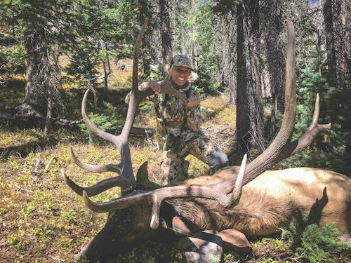 The net Pope & Young score of the Colorado bull, after deductions, is 341-3/8 inches.