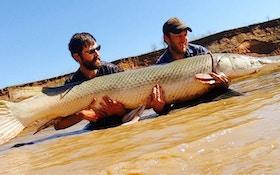Video: Battling an 8-Foot Alligator Gar