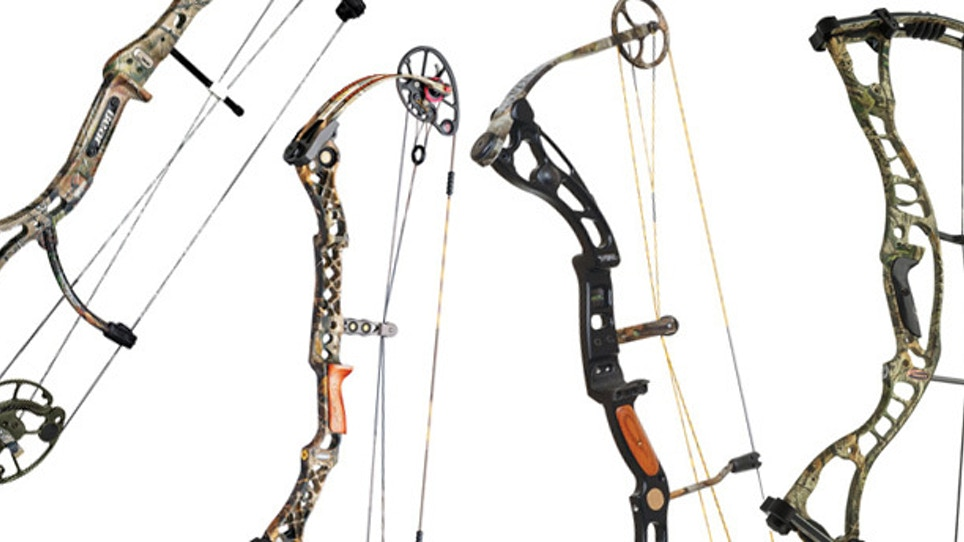 2010 New Bow Preview