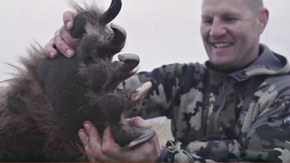 Video: Bowhunter Draws on Giant Brown Bear at 12 Yards
