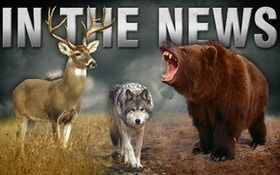 Public meetings set on proposed West Virginia hunting regs