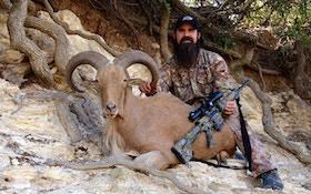 Hunting Aoudad Sheep With An AR Rifle