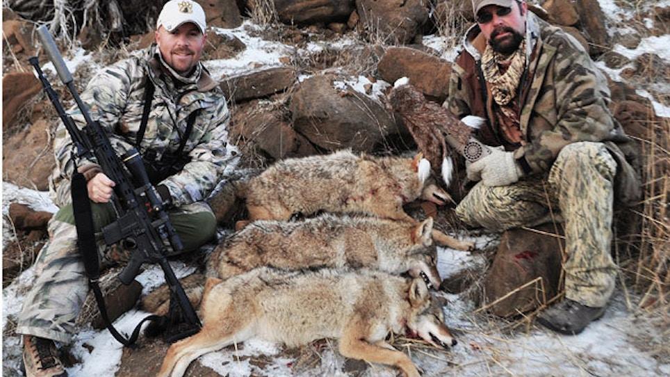 Best Coyote Calls For Winter