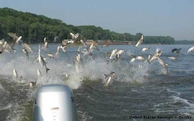 Nearly $1M Iowa Barrier To Asian Carp Working