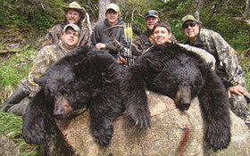 Black Bear Bowhunting Can Be The Thrill Of A Lifetime