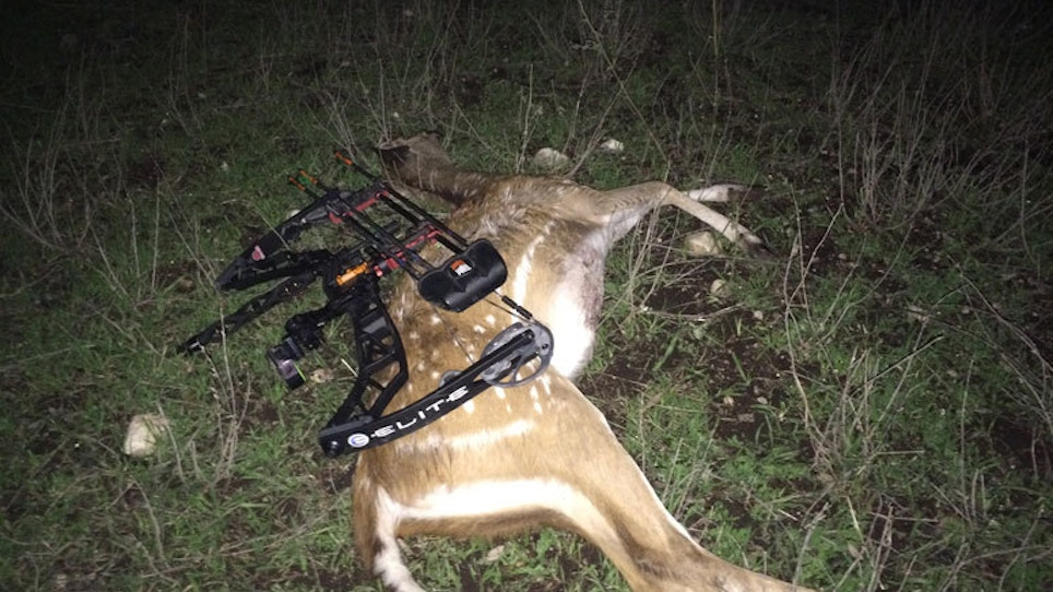 The Life Of A Bowhunter In Deer Season: Day 21