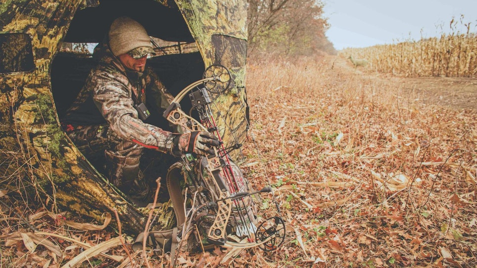 Make the Most of Your Whitetail Stands