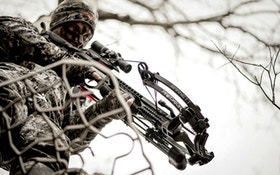 Save $600 on a Barnett Predator Crossbow Package