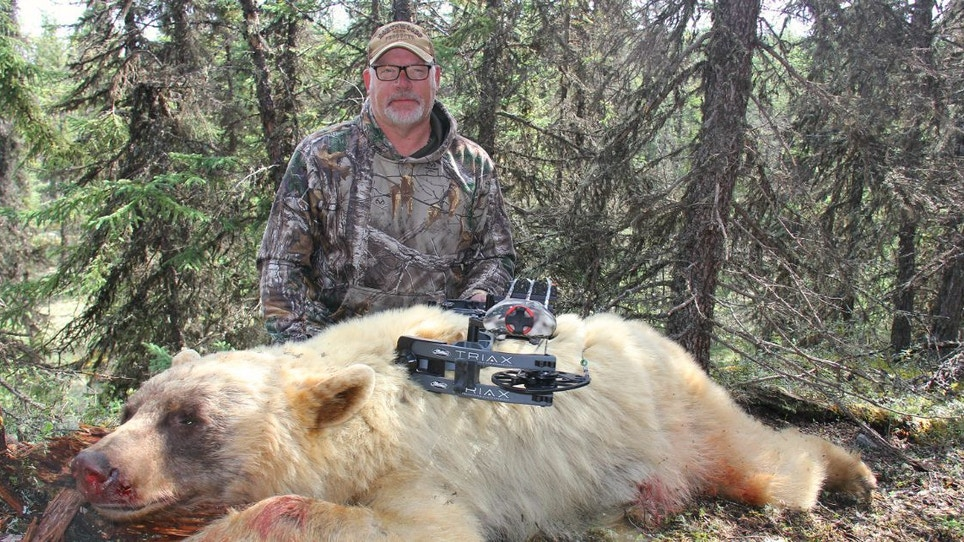 Archery Video: Grand Slam of Color-Phase Black Bears