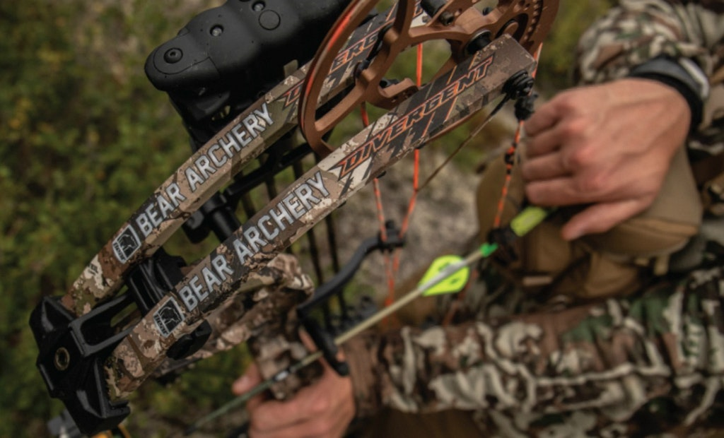 Bow Review: Bear Divergent