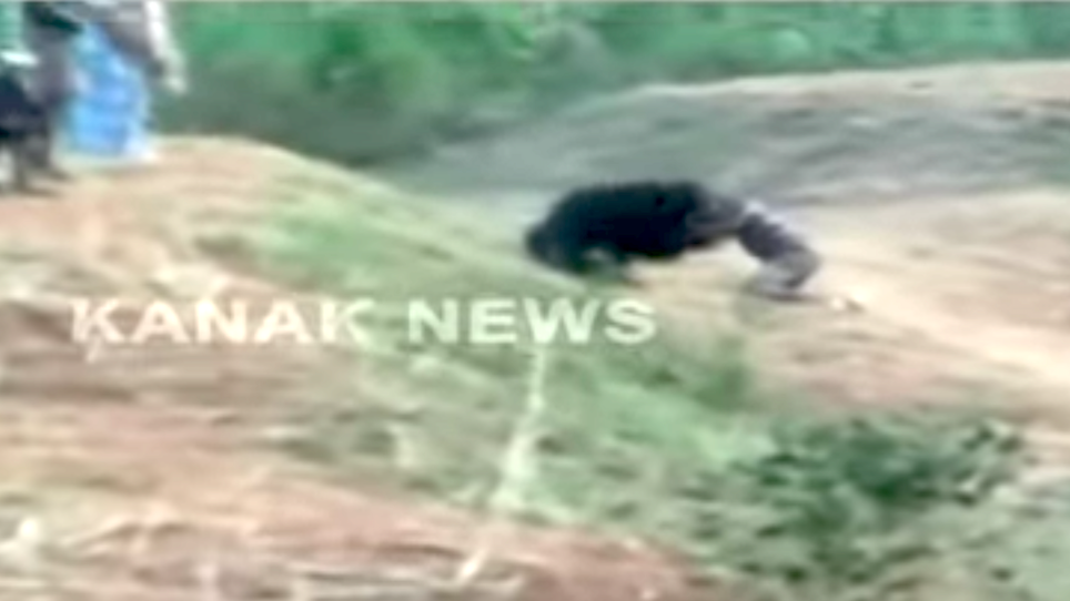 GRAPHIC: Bear Doesn't Want Selfie, Mauls Dumb Guy Who Tried