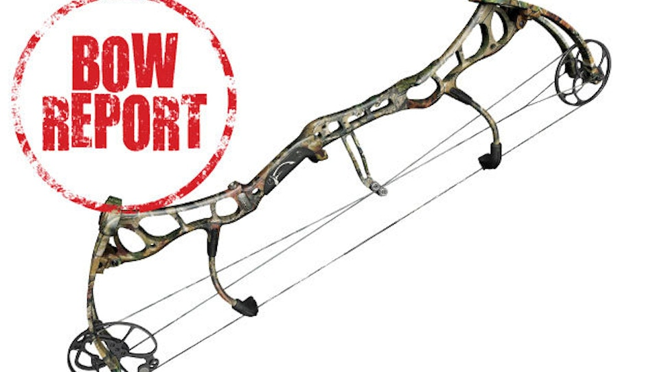 Bow Report: Bear Anarchy