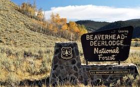 Public-Land Hunting Spots Most Deer Hunters Overlook