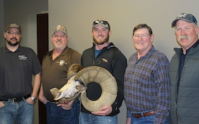 New Archery World Record Rocky Mountain Bighorn Sheep