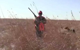 Refuges in North Dakota open to late-season bird hunting