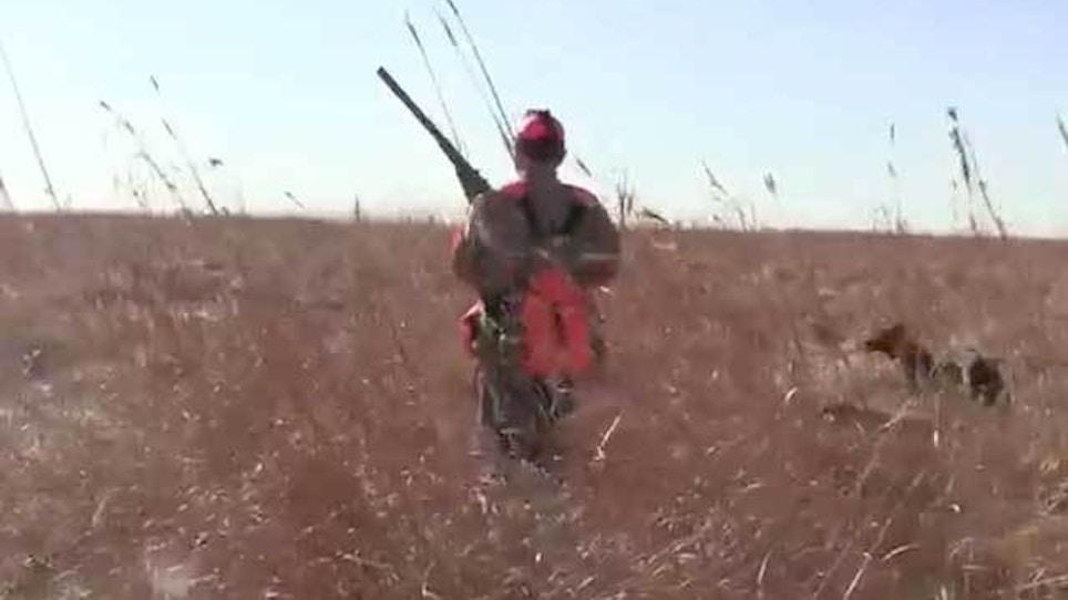 South Dakota governor announces pheasant task force
