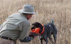 Remove Birds From Your Bird Dog's Retrieving Training