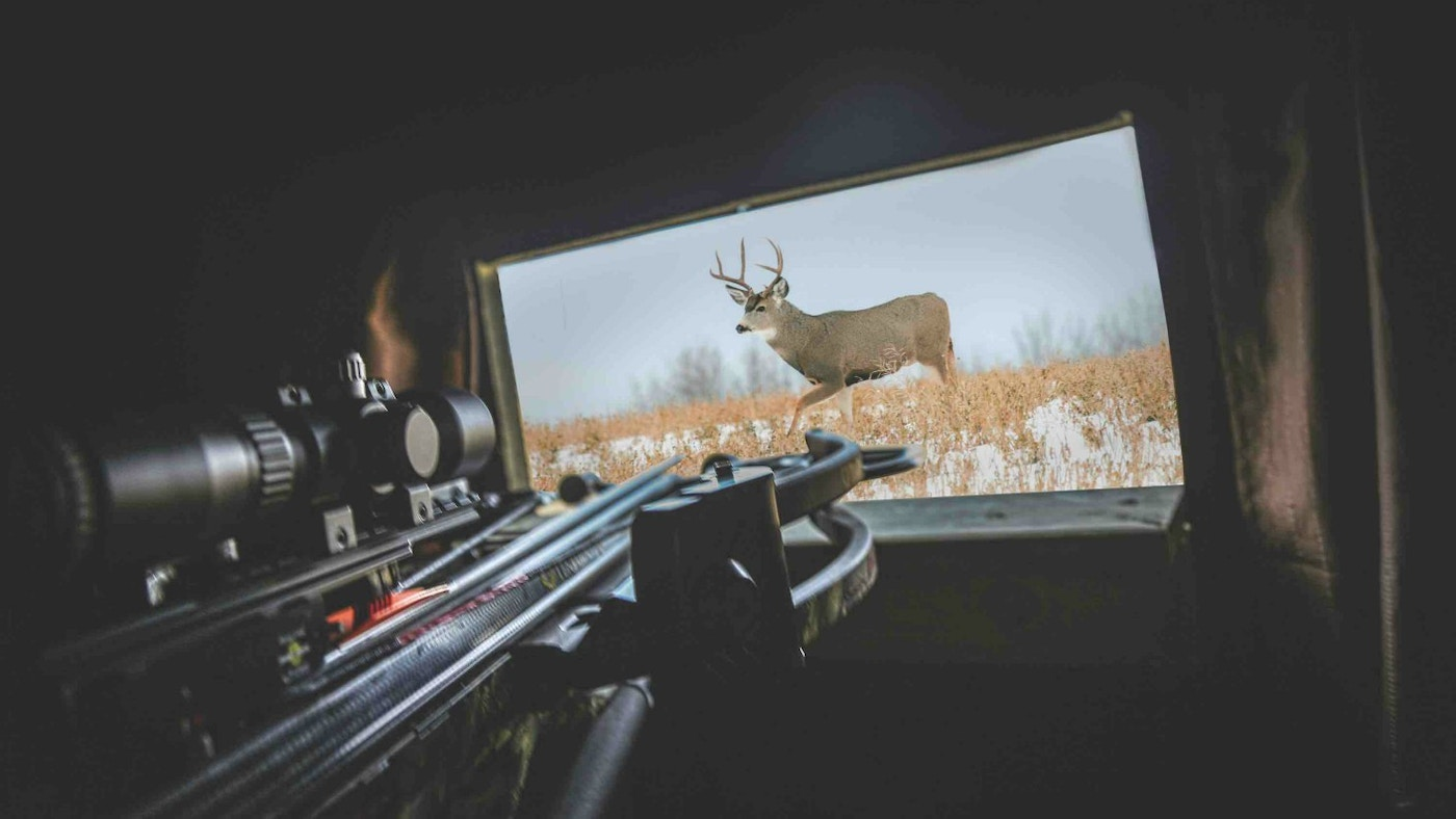 Tips for Crossbow Hunting From Ground Blinds | Grand View Outdoors