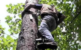 What you need to know when hanging treestands