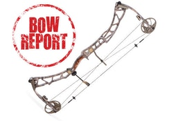 Bow Report: Elite Synergy