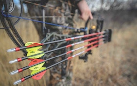 7 Steps to Becoming a Better Bow Shot